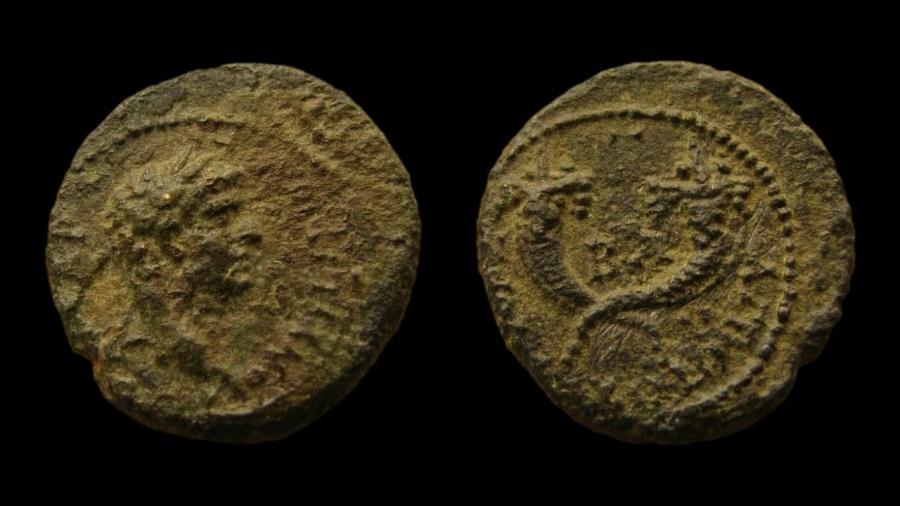 Ancient Coins - Judaea. Agrippa II, with Domitian. AE 17 mm. Caesarea Panias mint.