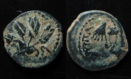 Ancient Coins - JUDAEA, AGRIPPA I AE PRUTAH. Overstruck: four ears of barley. Nice example.