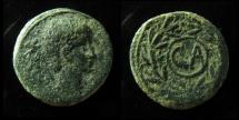 Ancient Coins - ANTIOCH, AUGUSTUS, 27 BC - 14 AD. EARLY YOUNG PORTRAIT. GREEN PATINA