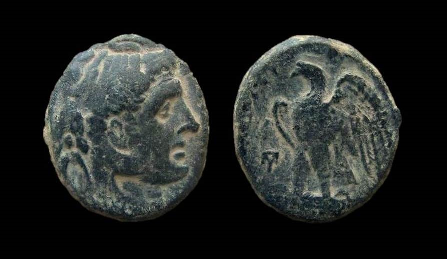 Ancient Coins - Ptolemaic Kingdom, Ptolemy I Soter, 305 - 283 BC. AE 19 mm. Alexandria mint.