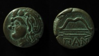 Ancient Coins - Thrace, Pantikapaion, 3rd Century B.C. AE 20mm, Superb!