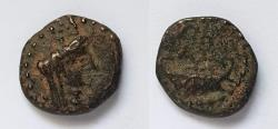 Ancient Coins - Askalon AE 14 mm. Dated Year 198 = AD 94-95.