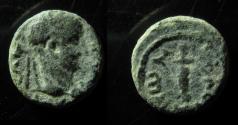 Ancient Coins - Sebaste, Samaria. Domitian (81 - 96 AD). AE 11mm
