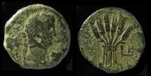 Ancient Coins - EGYPT, Alexandria. Claudius, 41-54 AD. AE23mm. Grain Ears