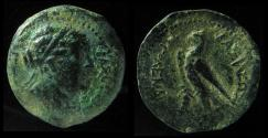 Ancient Coins - PTOLEMAIC DYNASTY, BERENIKE II, Wife of Ptolemy III. Ca. 244 BC. Ras Ibn Hani Mint, Very Rare!
