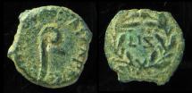 Ancient Coins - Pontius Pilate, procurator of Judea under Tiberius, 26-36 AD, AE prutah  Retrograde Letter Z  (LIZ)
