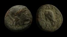 Ancient Coins - Seleukid Kingdom. Seleukos II, Kallinikos, 246-226 BC. AE 11 mm. Sardis mint.