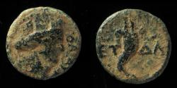 Ancient Coins - Agrippa II. 56-95 C.E. AE 13 mm. Rare!