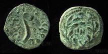Ancient Coins - Pontius Pilate, procurator of Judea under Tiberius, 26-36 AD, AE prutah, Struck in the year  31AD.
