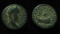 Ancient Coins - Macrinus AE 22mm of Phoenicia, Tyre.