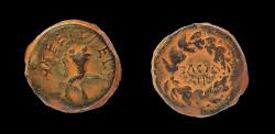 Ancient Coins - Judaea. Hasmonean. Mattathias Antigonus (Mattatayah). 40-37 B.C.E. AE 20 mm.