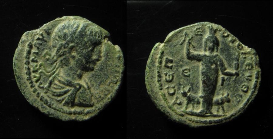 Ancient Coins - Judaea, Eleutheropolis. Elagabalus (218 - 222 AD). AE 25 mm.  Very Rare!