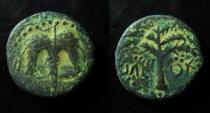 Ancient Coins - Judaea, Bar Kochba Revolt, AE25mm. IRREGULAR! Rare