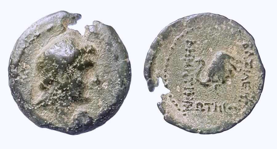 Ancient Coins - Seleukid Kingdom, Demetrios I. AE 18 mm. Extremely rare! One or two examples are believed to be extant!