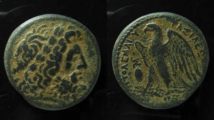 Ancient Coins - Egypt, Ptolemaic Kingdom. Ptolemy II AE 28. Alexandria Mint. Superb Condition.