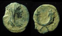 Ancient Coins - Petra. Pseudo-Autonomous issue. without monogram above!  Rare