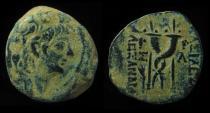 SELEUKID, Alexander II, 128-122 BC. Intertwined Cornucopiae. Nice Portrait