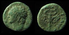 Ancient Coins - JUDAEA, Domitian. 81-96 CE. Æ 15mm, 'Judaea Capta' Issue.  Rare!!