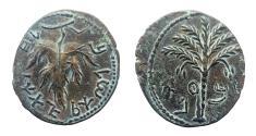 Ancient Coins - Judea. Bar Kochba Revolt. 132-135 CE. AE Middle Bronze (24 mm). Very sharp details.