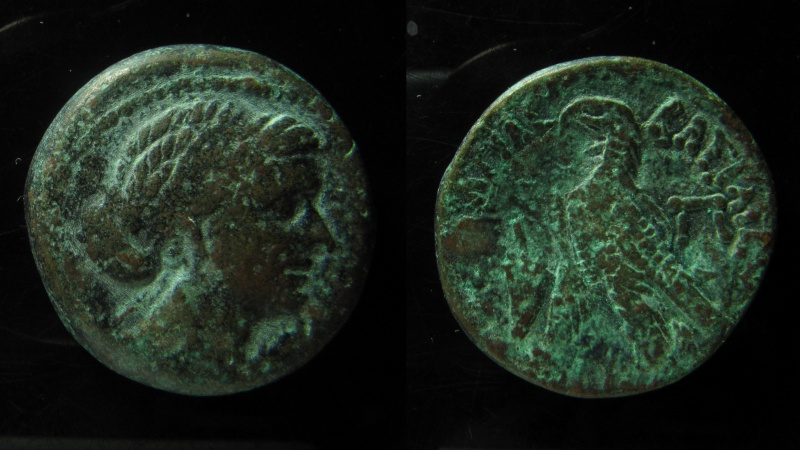 Ancient Coins - Cleopatra VII Philopator AE Diobol ­ 80 Drachmae. Alexandria mint, 51-30 BC. Superb portrait!!!!
