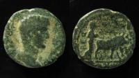 Ancient Coins - Phoenicia, Berytos. Divus Augustus. AE 24 m.
