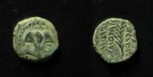 Ancient Coins - Judaea, Hasmoneans, Hyrcanus I AE Lepton. 134-104 BC. Clear Legend. Superb Example!