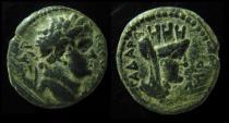 Ancient Coins - DECAPOLIS, GADARA. Titus.