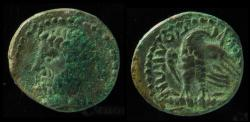 Ancient Coins - UNKNOWN, HEAD LEFT, TIBERIUS ? EAGLE FACING . NOT ATTRIBUTED