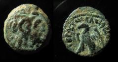 Ancient Coins - PTOLEMAIC KINGDOM, PTOLEMY CYRENAICA, 12MM