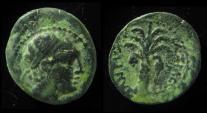 SELEUCID, Antiochus III. 223-187 BC. Tyre. Palm Tree
