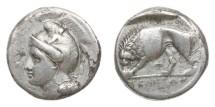 Ancient Coins - Lucania, Velia, 305-290 BC, AR Nomos