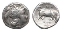 Ancient Coins - Lucania, Thurium,433-400 BC, AR Nomos