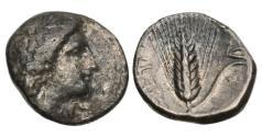 Ancient Coins - Lucania, Metapontum, 330-290 BC, AR Nomos