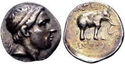 Ancient Coins - Seleucids, Antiochos III. Apamea o/t Orontes ?, 204 – 200 BC.