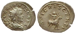 Ancient Coins - Valerian II, 255 AD.