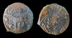 World Coins - Timurid