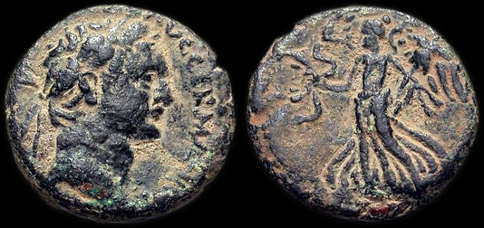 Ancient Coins - Roman Judaea: Domitian