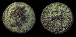 Ancient Coins - Macedon: Autonomous AE / Alexander