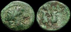 Ancient Coins - Chalcis: Ptolemaios