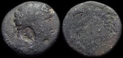 Ancient Coins - Seleucis and Pieria. Antiochia ad Orontem: Augustus