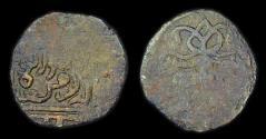 World Coins - Golden Horde: Jani Beg?