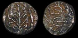 Ancient Coins - Civic Copper: Jalalabad