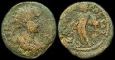 Ancient Coins - Samaria: Hadrian