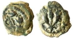 Ancient Coins - A bronze prutah of Mattathias Antigonus