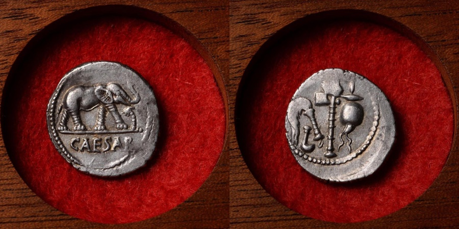 Ancient Coins - Ancient Roman Silver Elephant Denarius Coin of Julius Caesar - 49 BC