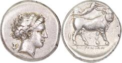 Ancient Coins - Campania, Neapolis, c. 300-275 BC. AR Nomos