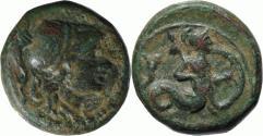 Ancient Coins - Lucania, Heraclea, c. 250-225 BC. Ex Sambon-Canessa 1927 (coll. Duke of Cajaniello)