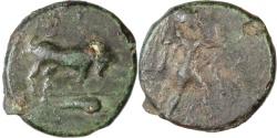 Ancient Coins - Lucania, Poseidonia. C. 350-280 BC AE 17