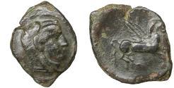 Ancient Coins - Sicily. Kephaloidion. 400-200 BC. Bronze. VF\XF \ Cephaloedium