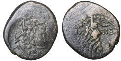 Ancient Coins - Amisos Pontos Bronze unit 100 BC Gorgon \ Greek Coins